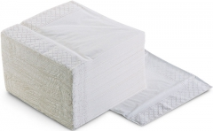 Serviettes blanches 2 Plis 53-040